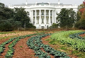 Michele Obama tries to do a good thing with this garden