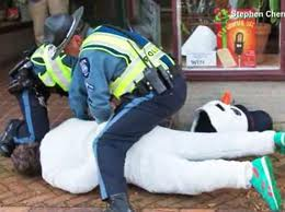 Frosty the Snowman gets bagged by cops